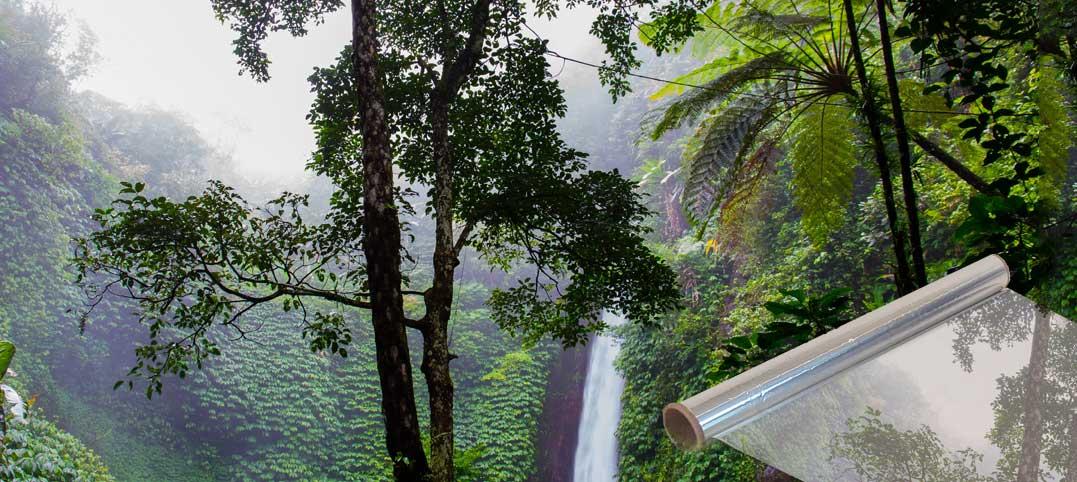 Alufolie – Regenwald von der Rolle
