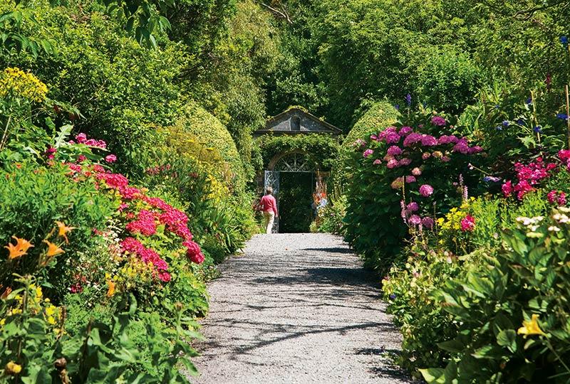 Irischer Garten mit blühenden Pflanzen