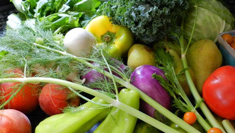 Bunte Vielfalt an Gemüse